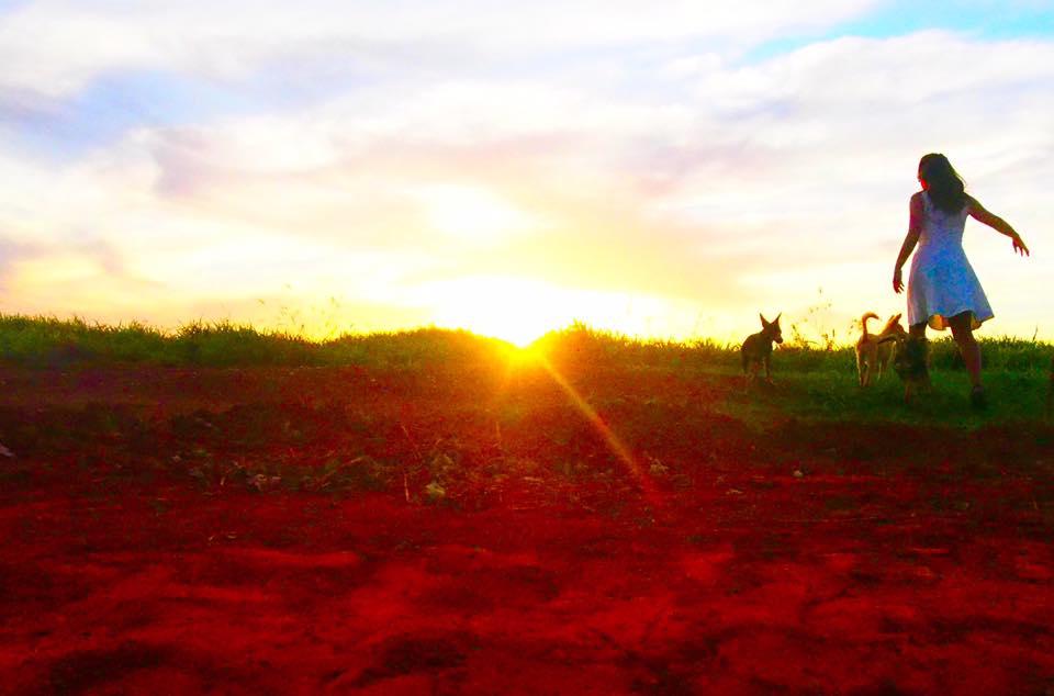 パラグアイの大地