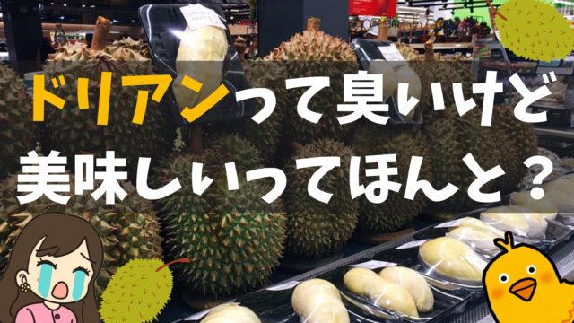 タイでドリアンを食べてみた!臭いけど美味しい?【味・値段・選び方・注意点】