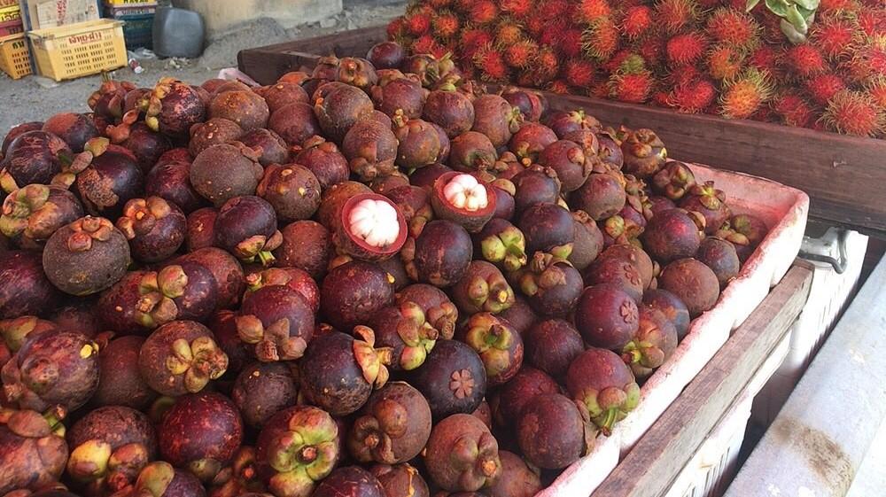 タイに来たら絶対食べたい!南国フルーツ10選【旬の時期やおすすめの食べ方も紹介】マンゴスチン